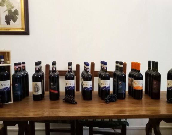 degustazione-vini-mirandola-nel-chianti-1